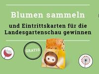Verlosung Landesgartenschau 2020